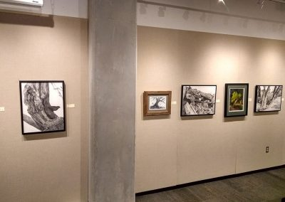 From left to right work by Rita Naras, Jeff Weekes, Rita Naras, Ian Davis, and Rita Naras
