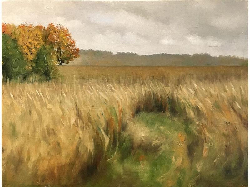 Autumn outside of Roseneath ON by Jeffrey Weekes