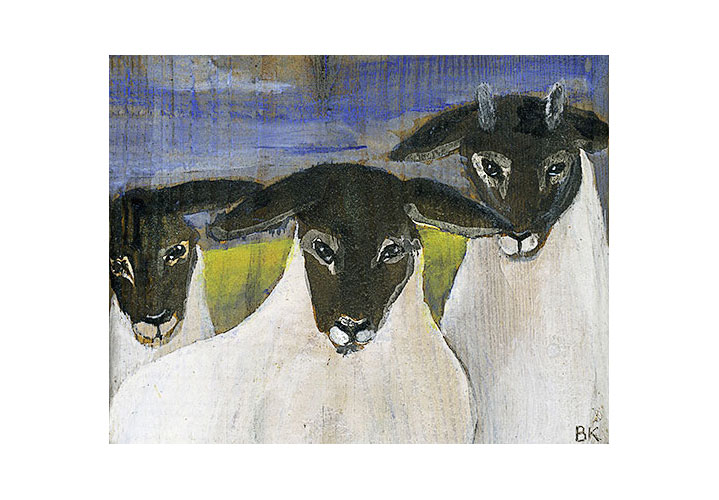 Sheep by Barbara Klatt