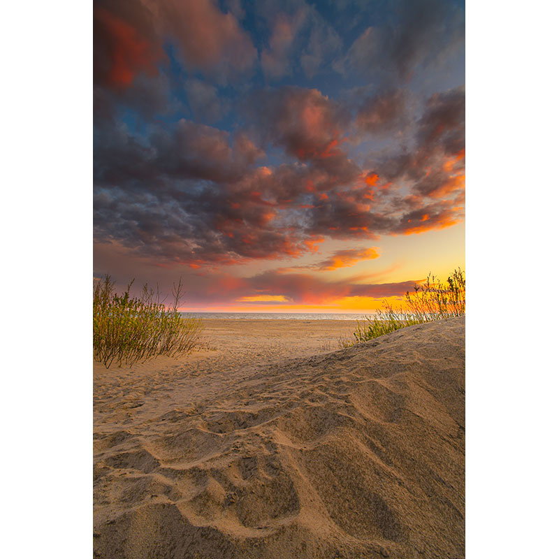 Dunes by Dave Nodwell
