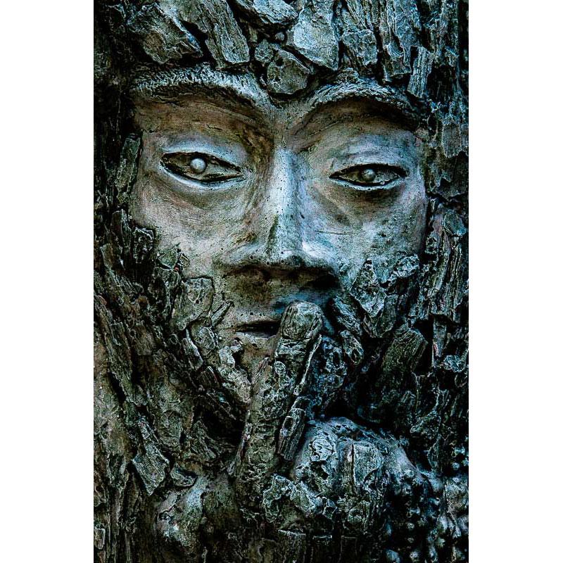 Forest Dweller by Ian Davis