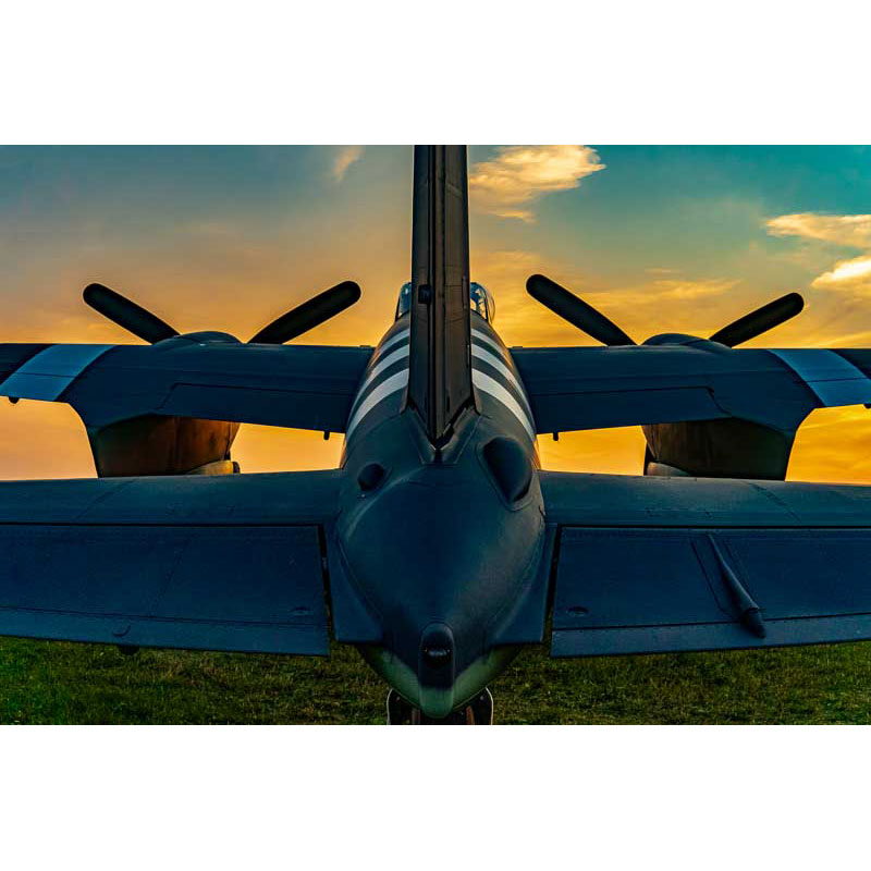 Mosquito's Back End by Ian Davis