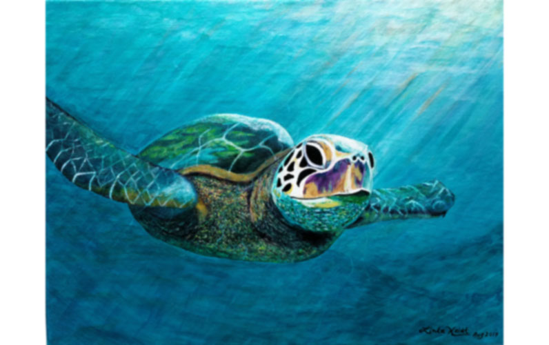 Sea Turtle by Linda Heidt