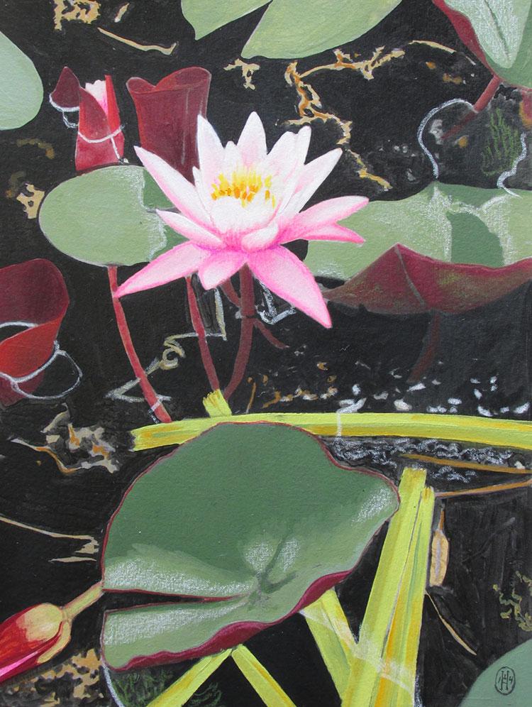 Pond Elements by Edward Hagedorn