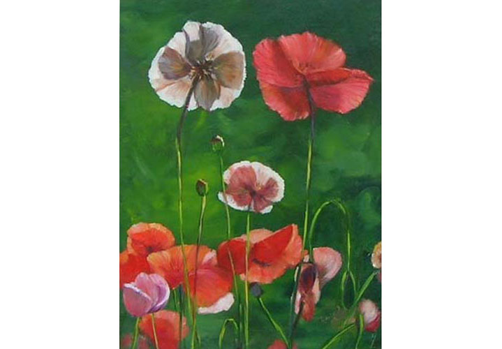 Poppies by Anita Gutteridge