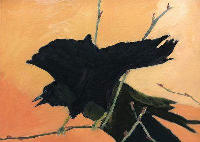 Raven Talk by Jerry F Albert