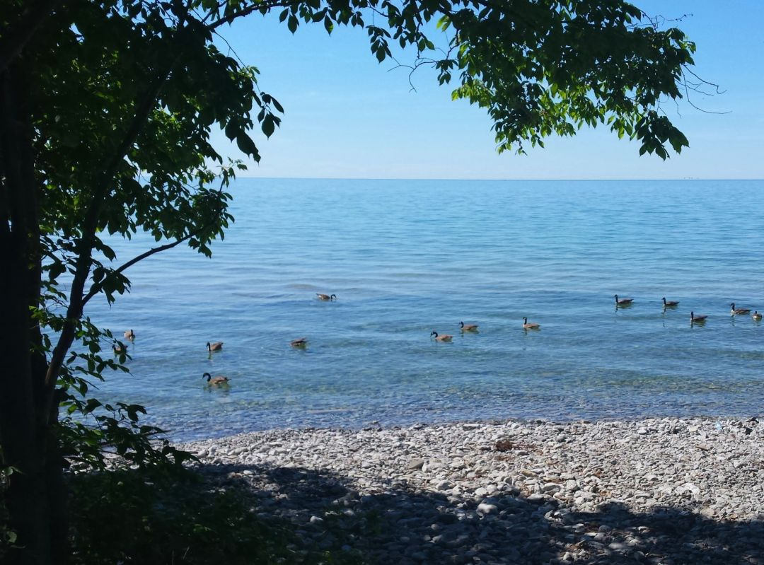 Blue Lake Photo by Marie-Lynn Hammond