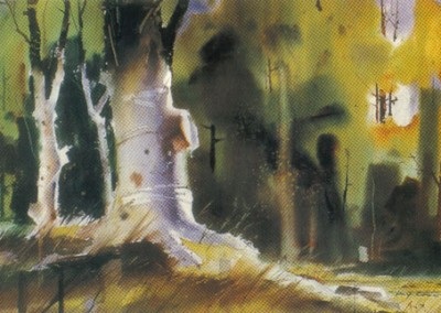 Softly in the Wood by Mary McEwan